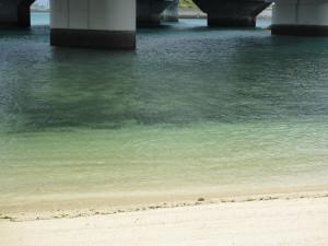砂浜から海底までのグラデーションがキレイ