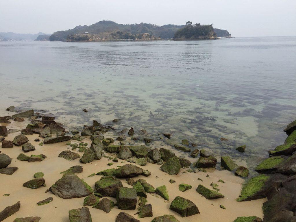 大島の海岸沿いを走る